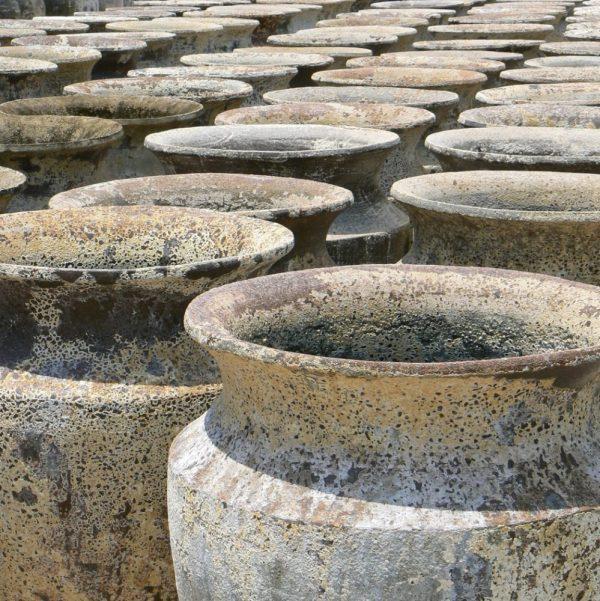 Atlantis Skorpio Jar