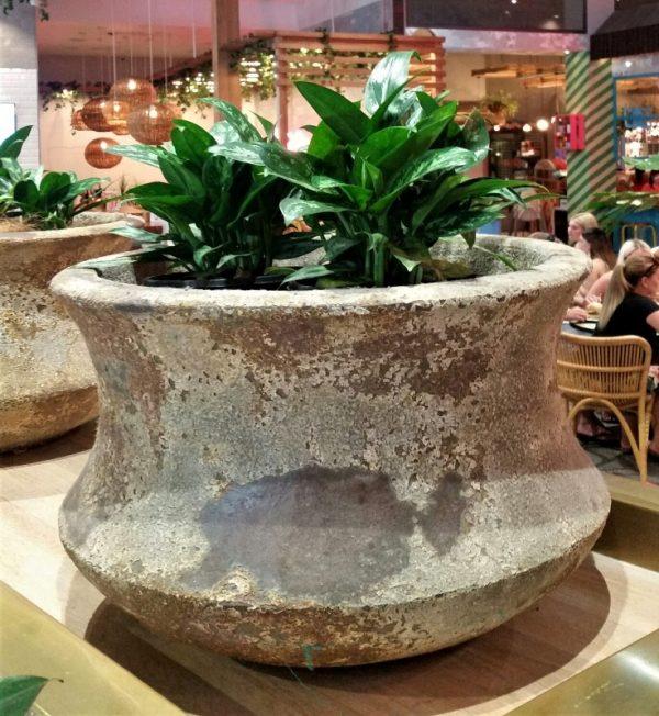 Atlantis Lotus Bowl